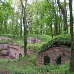 belle vue du Fort Ducrot